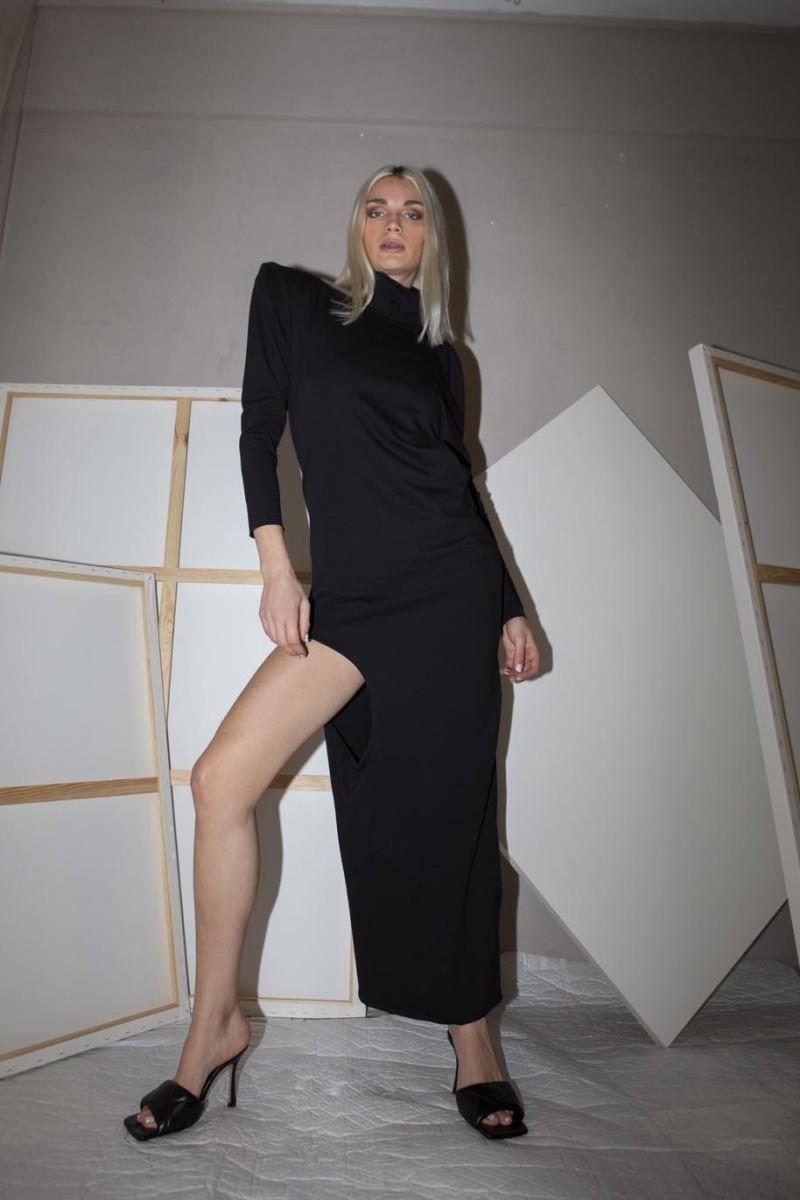 Long dress, one long sleeve, open back, turtle neck